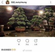 郭碧婷能嫁入豪门的原因分析,她为什么叫向日葵?